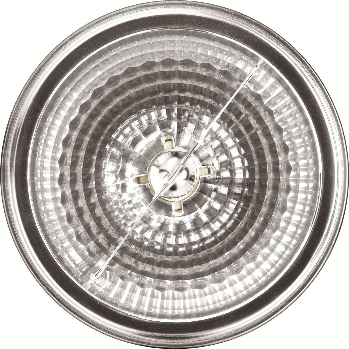 Lâmpada FLC AR 111 8 Graus 50W 12V