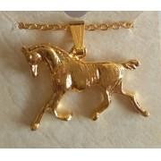 Colar cavalo adestramento dourado