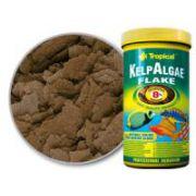 Tropical Kelp Algae Flakes 055 g ( P13 )