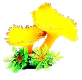 Soma Fish Coral Mix 06 ( 078761 )