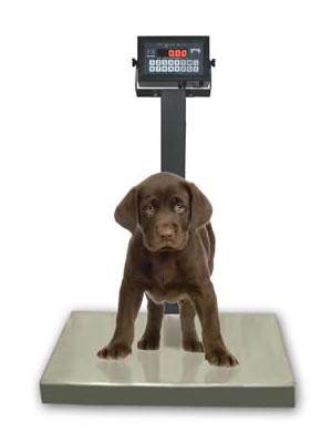 Balança Pet Total Inox 304 Ramuza Capacidade de 200KG/50G