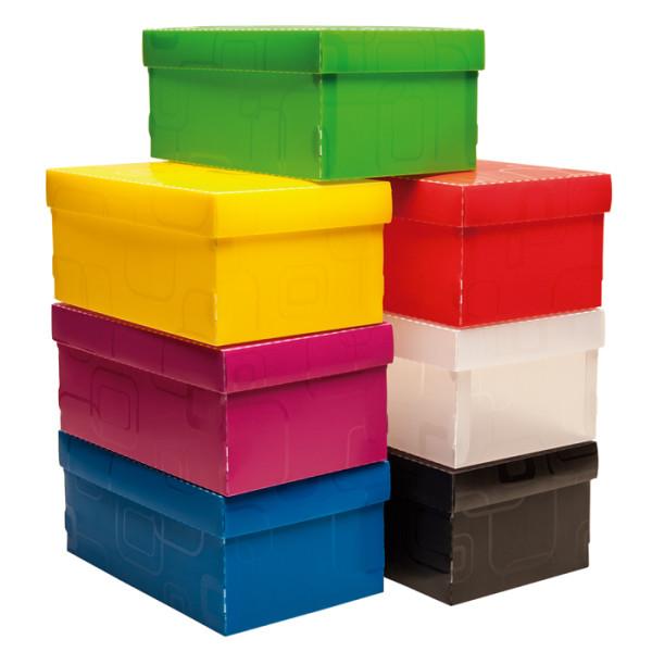 Caixa Organizadora Mini Sapato DELLO Amarelo 2169 C/5 Unid.