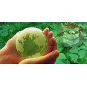 Curso online de Projetos Ambientais + Certificado