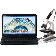 Microsc�pio Composto Biol�gico AmScope 40X-800X Glass Optics Metal Framework Home School Student Bio