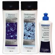 Kit Shampoo condicionador e creme de pentear aveia cabelos secos crespos