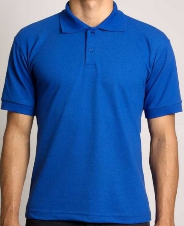 Camisa Polo Masculino Azul