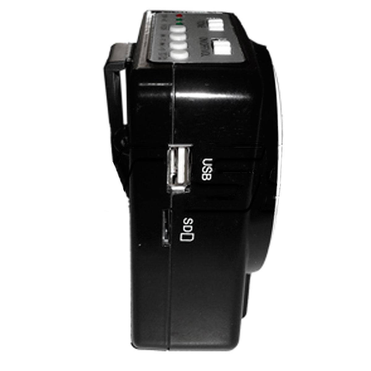 BW700 - Kit Professor Port�til c/ Caixa + Microfone c/ Fio BW 700 - CSR