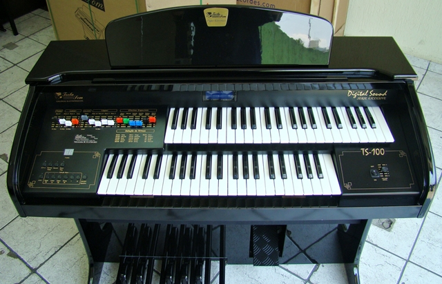 Órgão Eletrônico Teclasom TS 100 Preto Alto Brilho - Usado