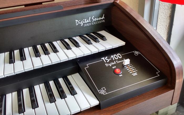 Orgao Eletrônico Teclasom TS 100 com móvel Bi Partido - Castanho  - Teclasom Instrumentos Musicais Ltda