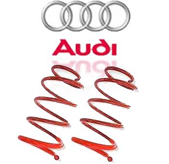 Molas Esportivas Audi