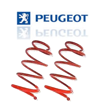 Molas Esportivas Peugeot