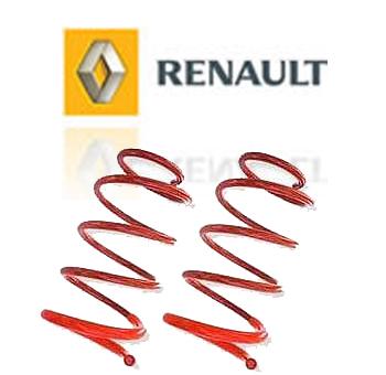 Molas Esportivas Renault