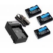 3 baterias LP-E6N + 1 Carregador para Canon para câmera digital e filmadora Canon EOS Digital 5D Mark II, EOS 60D, EOS Digital 7D