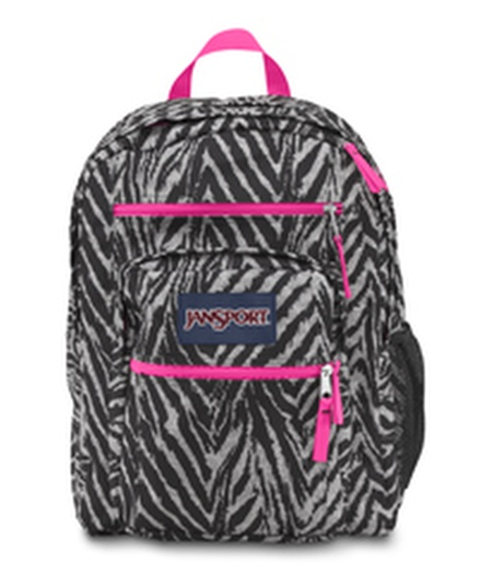 MOCHILA JANSPORT (BIG STUDENT GRYTAR WILD HEART)