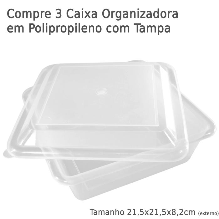 Compre 3 Caixa Organizadora em Polipropileno com Tampa