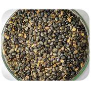 Sementes Crotalária Juncea - Caixa com 3,0 kg