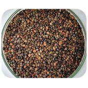 Sementes Crotalária Spectabilis - Caixa com 3,0 kg