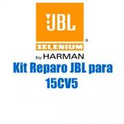 Kit Reparo JBL Selenium 15CV5