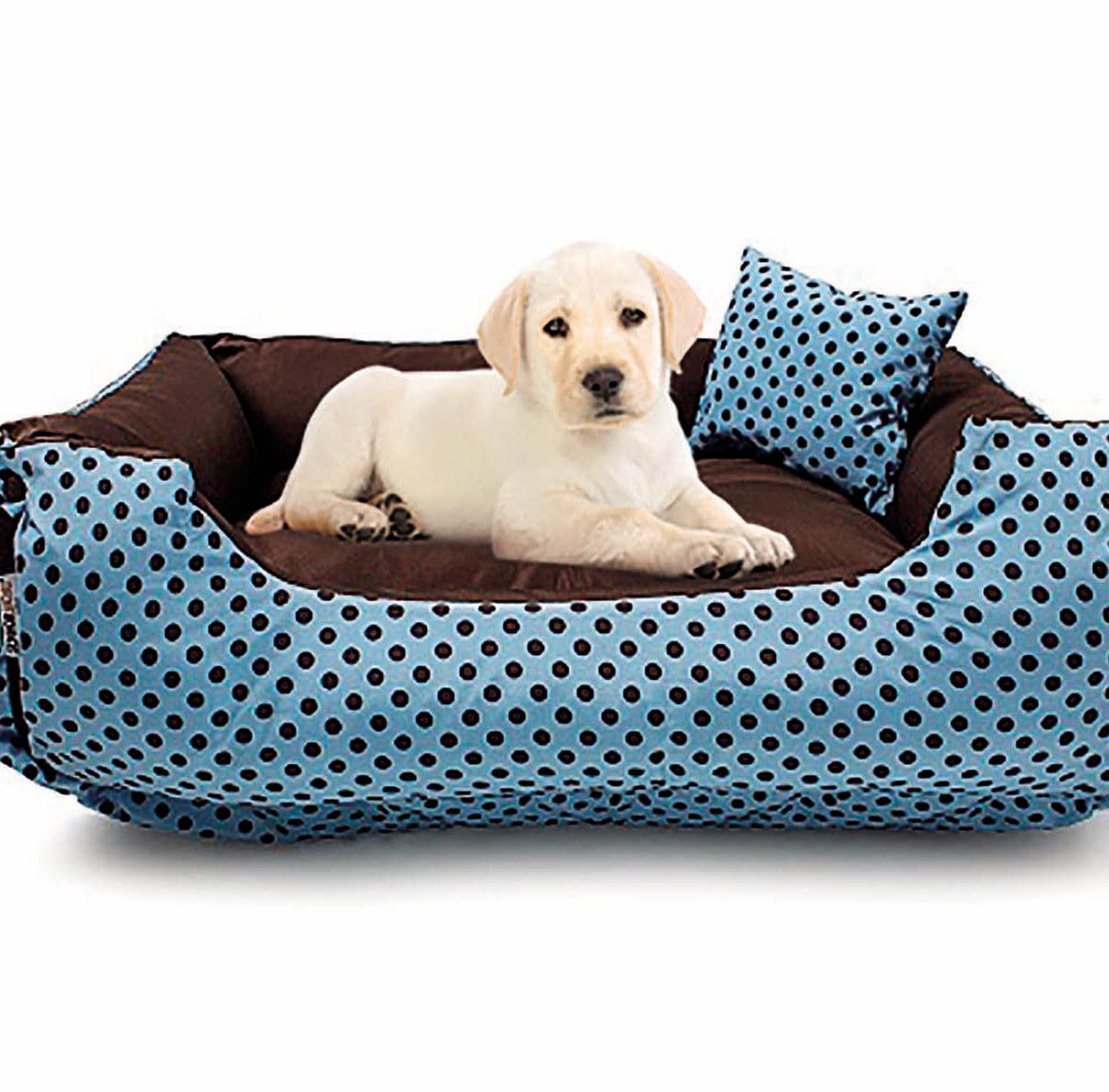 Quarto Sala E Um Cachorrinho Letra ~ Caminha de Cachorrinho e Gatinho Cama Pet Pequena Bolinhas com 1