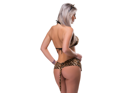 Fantasia Tigresa Linha Desejos Sexy Fantasy  - Mimus Presentes