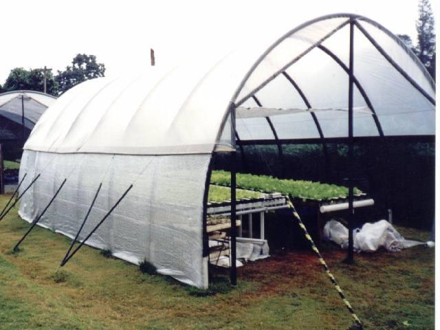 Filme Plastico Estufa Agricola 4m X 4m 100 Micras  - Casafaz