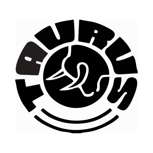 Abafador de Ruídos Tipo Concha Taurus Profissional Cx C/ 6 Peças  - Casafaz