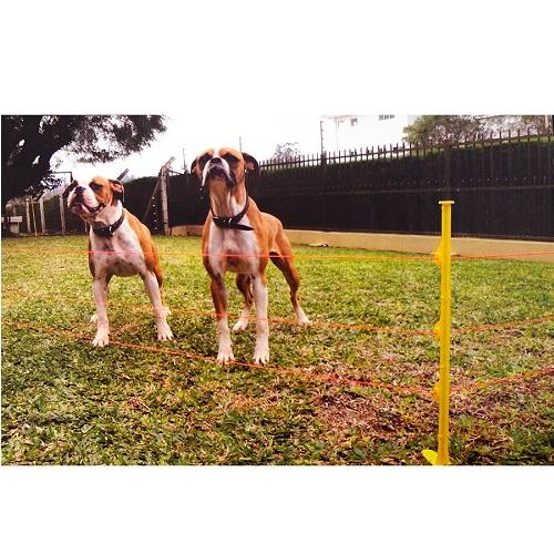 Kit Pet Cerca Elétrica Zebu Para Pequenos Animais 220V  - Casafaz