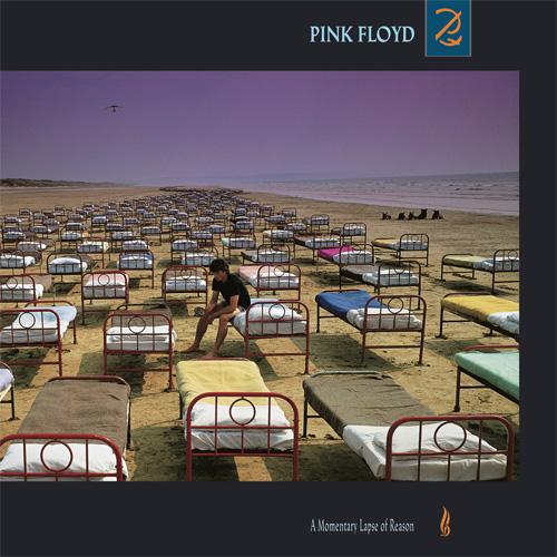 Lp Pink Floyd A Momentary Lapse of Reason 180gr Reedição 2016