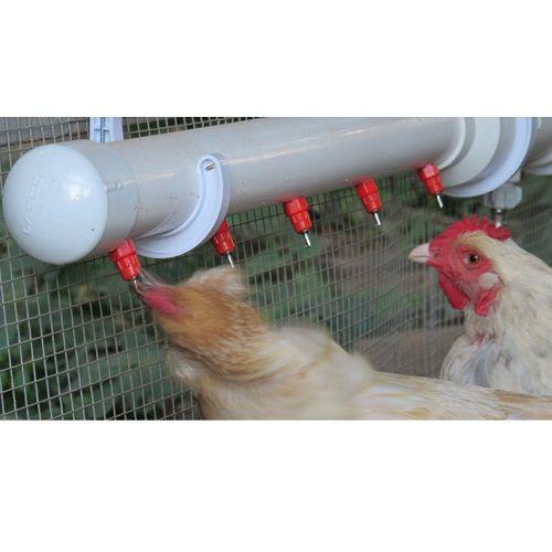Bebedouro Aves Automático Tipo Niple 360º Graus 20 Unidades  - Casafaz