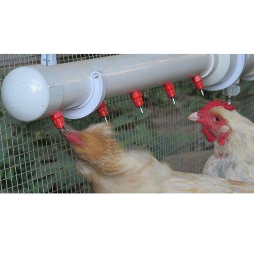Bebedouro Aves Automático Tipo Niple 360º Graus 3 Unidades   - Casafaz