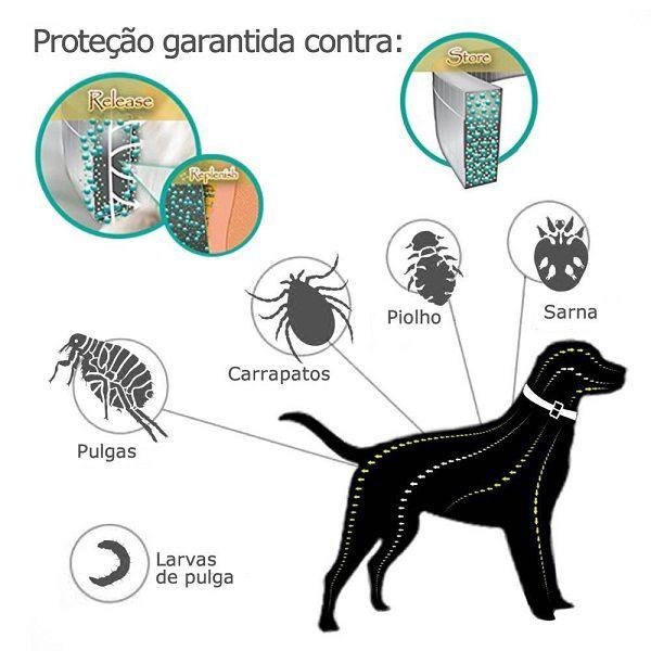 Coleira Antipulgas E Carrapatos Para Cães Proteção 8 Meses Dewel  - Casafaz