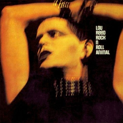 Lp Lou Reed Rock N Roll Animal  - Casafaz
