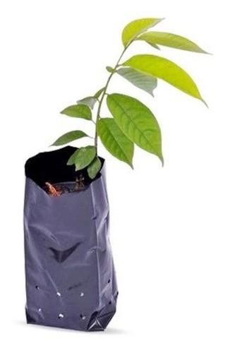 Saco Saquinho Plástico Para Mudas 10 X 20 4000 Unidades
