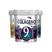 Col�geno Hidrolisado 9g Instant�neo Zero A��car - 300g - Ch� Mais