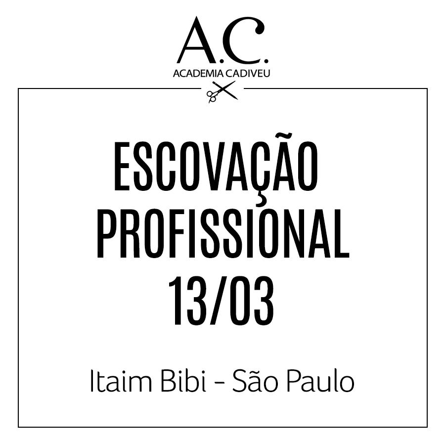 ESCOVAÇÃO PROFISSIONAL - ESGOTADO