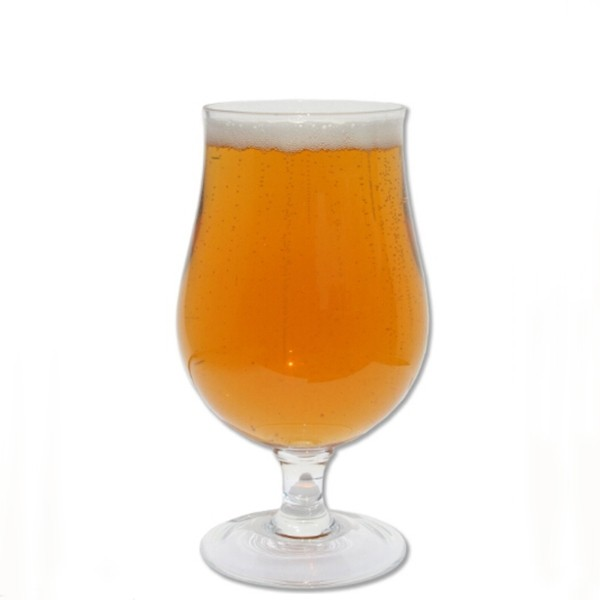 Kit de Insumos Cerveja de Panela - Strong Gold Ale   - CERVEJA DE PANELA