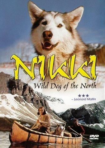 NIKKI, O CÃO SELVAGEM DO NORTE (1961)  - FILMES RAROS EM DVD