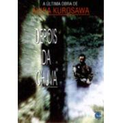 Depois da Chuva (1999)