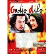 O Estrangeiro Louco  (Gadjo Dilo, 1997)