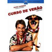 Curso de Verão (1987)