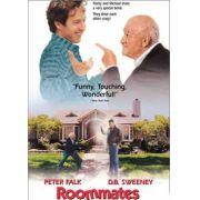 Dupla Sem Par (1995) dublado com Peter Falk
