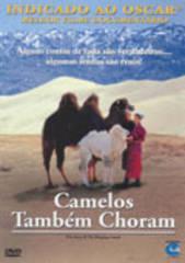 DVD Camelos Também Choram  - FILMES RAROS EM DVD