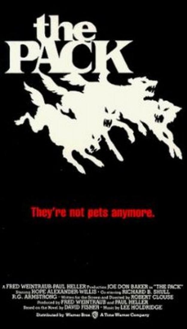 A Longa Noite De Terror - 1977  - FILMES RAROS EM DVD