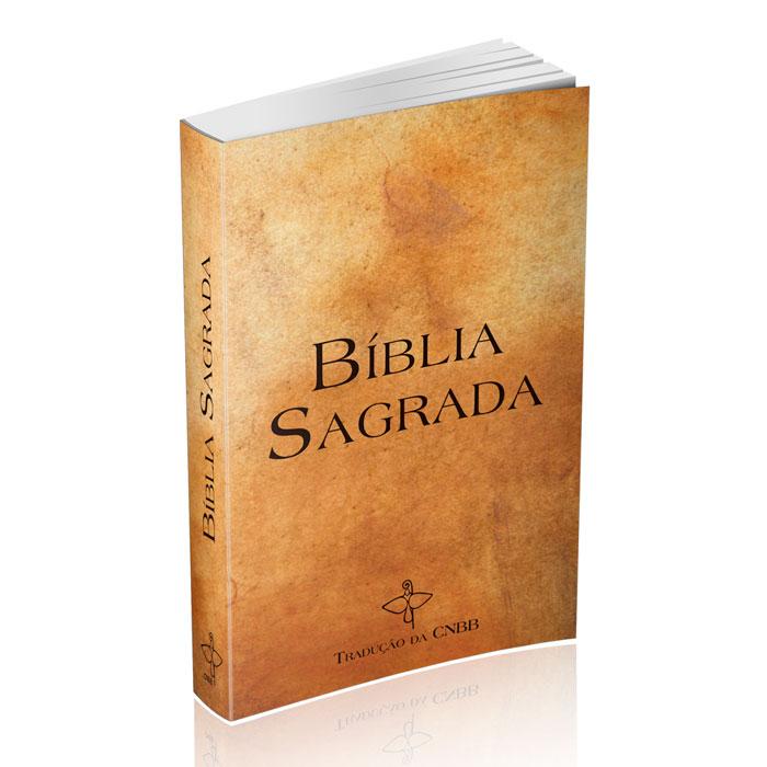 Bíblia Sagrada - Capa de Cristal  - Pastoral Familiar CNBB