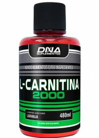 TERMOGÊNICO L-CARNITINA 480ml DNA  - Orluz