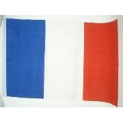 Bandeira França 40x30cm Festas Decoração Fantasia Jogos