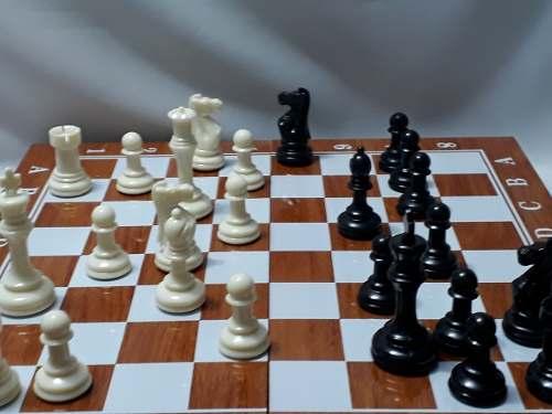 Jogo Xadrez Luxo 49x49cm Peças Grandes Estojo Madeira  - PRESENTEPRESENTE