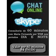 Consultoria Skype digitando ou voz  Período Noturno 60 Minutos.