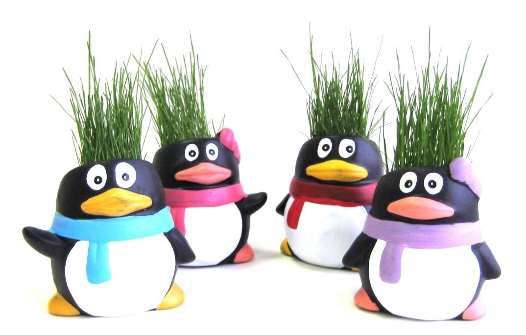 Zé Picolé - Vaso decorativo que cresce grama - Pingulitos