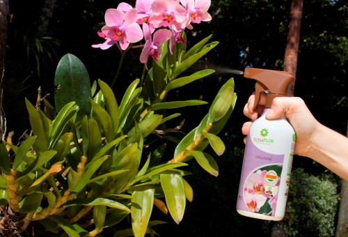 Fertilizante Foliar Dona Flor Orqu�deas 500 ml pronto uso